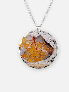 Cherish the Earth Necklace