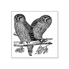 """Two Owls Square Sticker 3"""" x 3"""""""