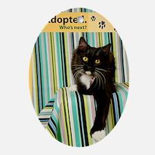 Cat Oval Ornament