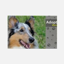 Collie Rectangle Magnet