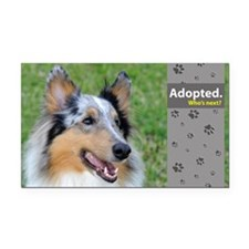 Collie Rectangle Car Magnet