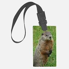 Groundhog eating Luggage Tag