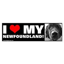"""I LOVE MY NEWFOUNDLAND!"" Bumper Bumper Sticker"