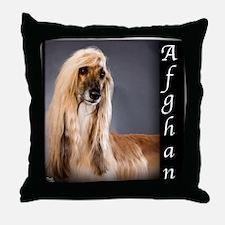 Afghan Throw Pillow