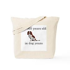 80 birthday dog years springer spaniel Tote Bag