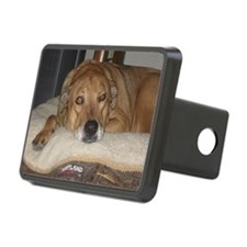 Haley Relaxing Hitch Cover