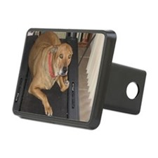 Haley Walking Resize Hitch Cover