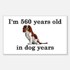 80 birthday dog years springer spaniel 2 Decal