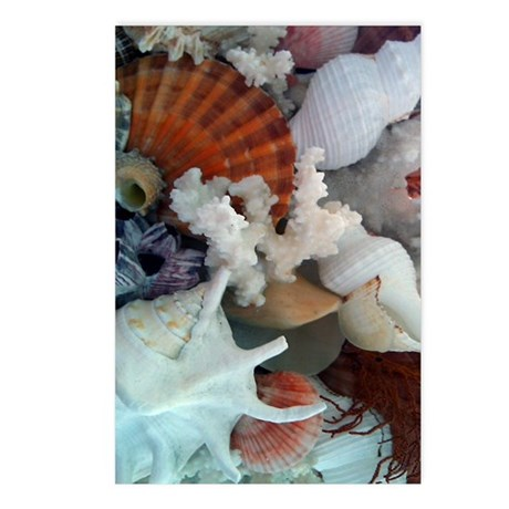 Shell journal Postcards (Package of 8)