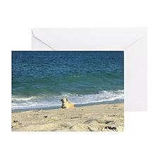 Nauset Beach, Cape Cod Greeting Cards (Pkg. of 6)