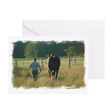 Cool Mare Greeting Cards (Pk of 10)