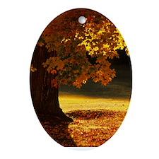 Inspirational Motivational Poster: O Oval Ornament