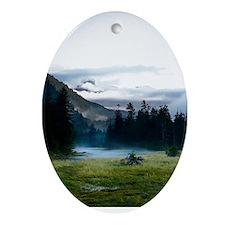 Inspirational Motivational Poster: I Oval Ornament