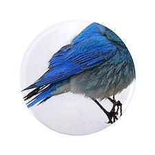 """Mountain blue bird 3.5"""" Button"""