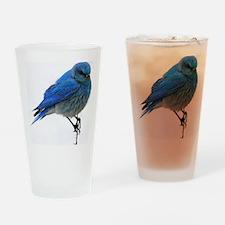 Mountain blue bird Drinking Glass