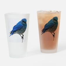 fb 10x14 Drinking Glass