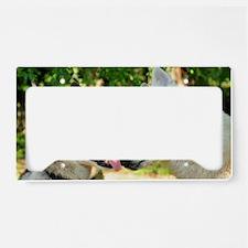 Love Love License Plate Holder