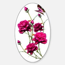 iPod touch2 Fuscia roses Transp Decal