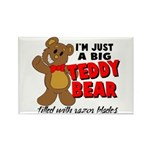 Big Teddy Bear Rectangle Magnet