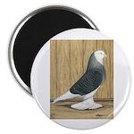 Silver Check Bald 2.25