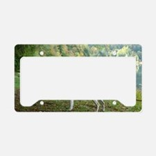 Automn Colors License Plate Holder