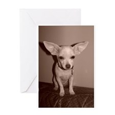 I believe I can fly! Greeting Cards