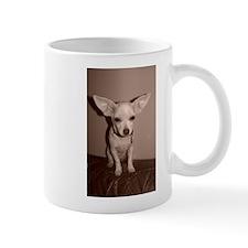 I believe I can fly! Mugs