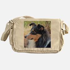 Tri-color Sheltie head study Messenger Bag