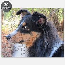Tri-color Sheltie head study Puzzle