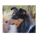 Sheltie Fleece Blankets