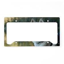 Vanko3 License Plate Holder