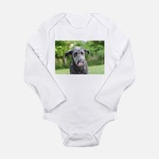Wet Irish Wolfhound Puppy Body Suit
