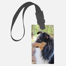 Tri-Color Sheltie Head Luggage Tag