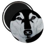 Malamute Black & White Magnet