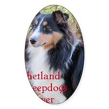 Shetland Sheepdogs Forever Decal