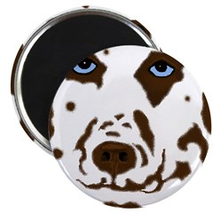 Red & White Dalmatian Magnet