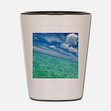 Swim Shot Glass