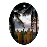 Costa rica Oval Ornaments