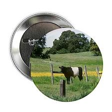 """Oreo Cow 2 2.25"""" Button"""