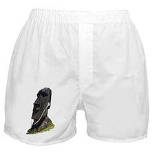 Moai Head Ear Buds 1 Boxer Shorts