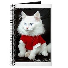 Cute Turkish angora Journal