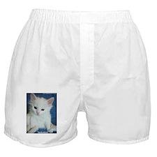 Cool Turkish angora Boxer Shorts