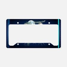 Wall Peels Midnight Mountain  License Plate Holder