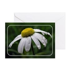 ...Marguerite 01... Note Card (Pk of 10)