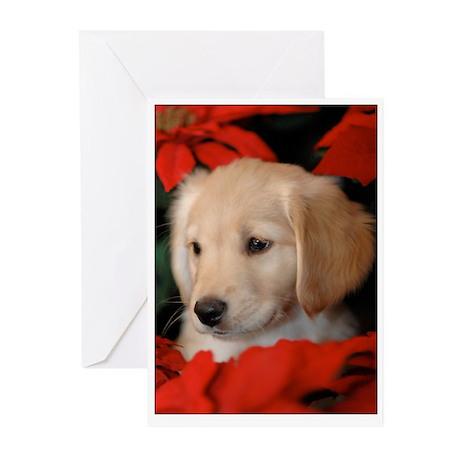 Golden Puppy in Poinsettas Happy Holidays Cards