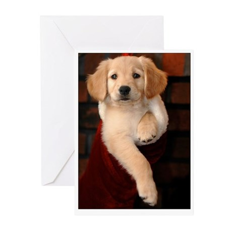 Golden Puppy Christmas Stocking Holiday Cards