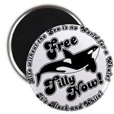 Free Tilly Now Original Magnets