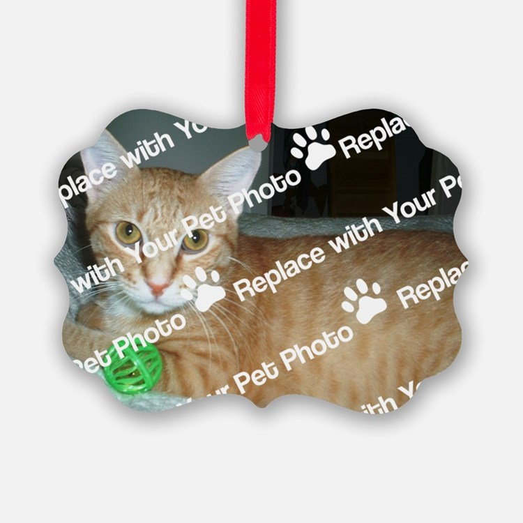 CUSTOMIZE Add Your Pet Photo Ornament