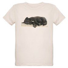 Sleeping Irish Wolfhound Puppy T-Shirt