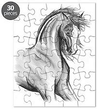 Windswept Puzzle